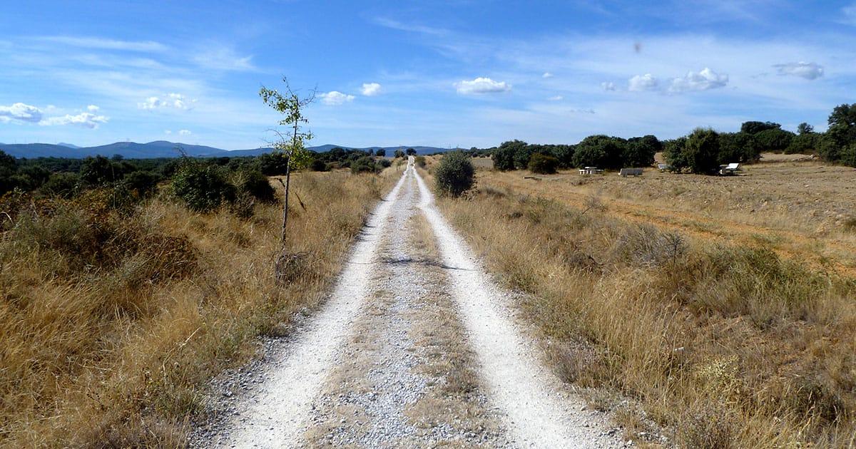 cammino-di-santiago-meglio-soli-o-gruppo